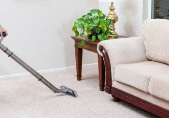 Motivos para contratar a Dream Wash em 2019 e fazer uma lavagem de carpete profissional
