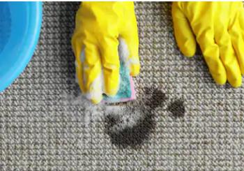 Manutenção de rotina: qual a melhor forma de limpar carpete?