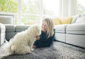 Qual a frequência da lavagem de carpetes com bicho de estimação em casa?